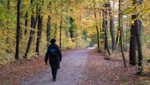 Tre gode grunde til ikke at sidde i uskiftet bo